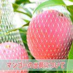 20160626-20150817-DSC_9255_ai