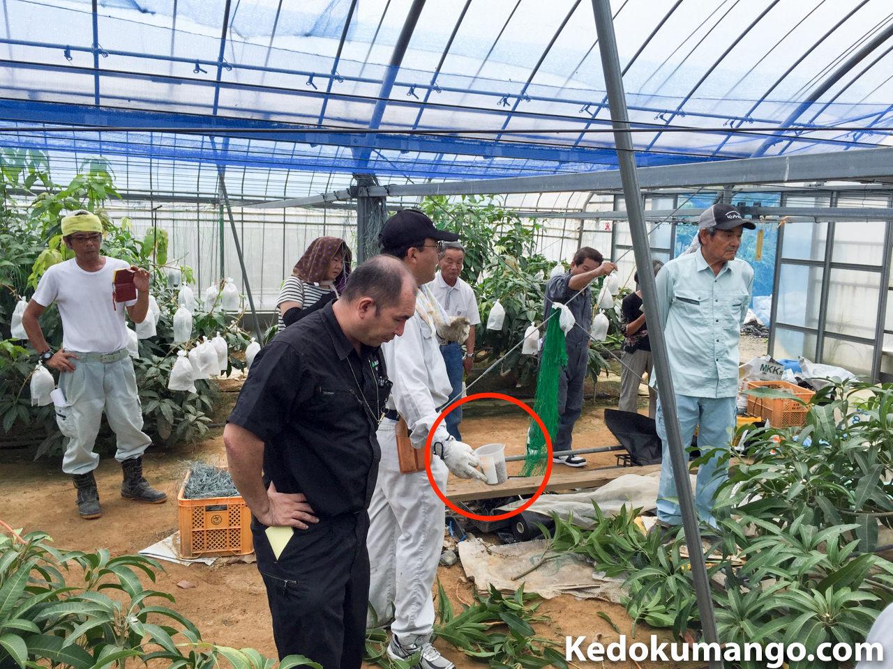 施肥に関する指導の様子