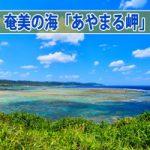 【奄美大島観光】奄美十景の一つ「あやまる岬」からの眺めが最高です!