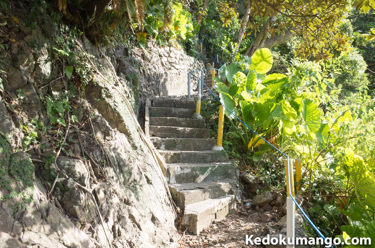 山羊島展望台への登山道