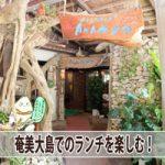 【奄美大島のランチ】リゾート施設「ばしゃ山村」のレストラン「AMAネシア」へ行ってきた!