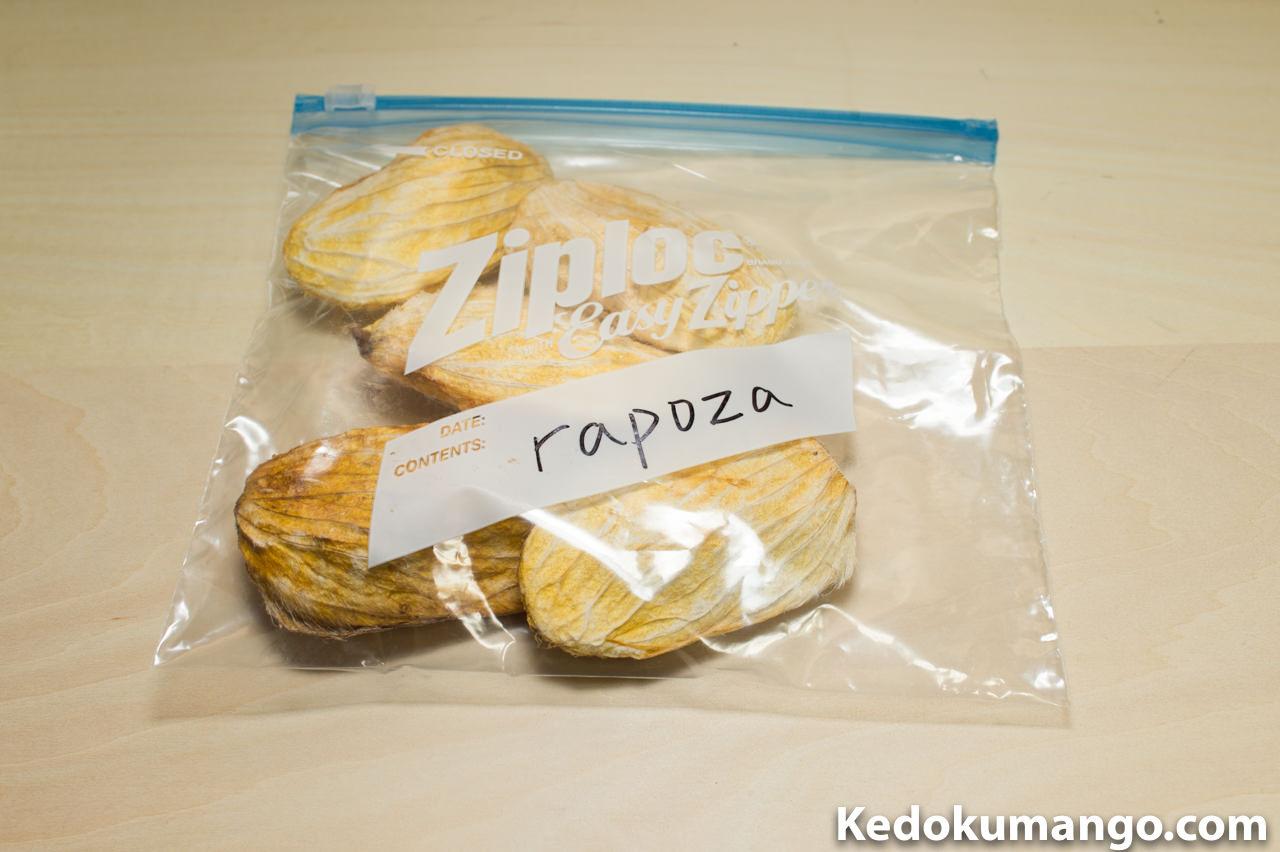 マンゴー「Rapoza」の種