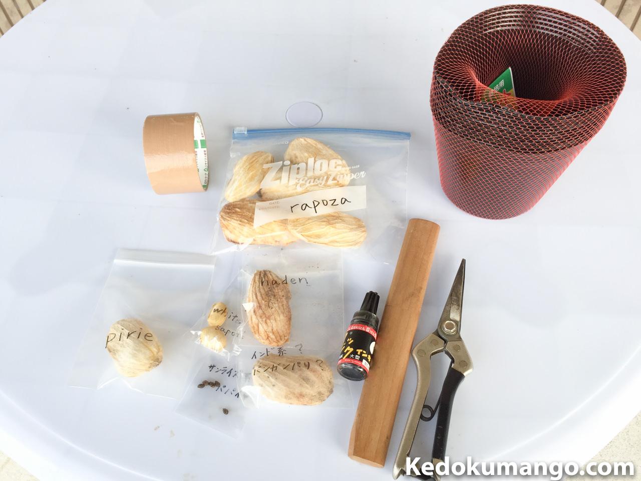 マンゴーの種の植付けで使用した道具