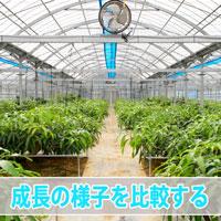 20160919-dsc_5741_ai