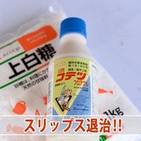 【防除作業】マンゴーの新芽に「チャノキイロアザミウマ(スリップス)」が発生してしまいました! | 花徳マンゴー