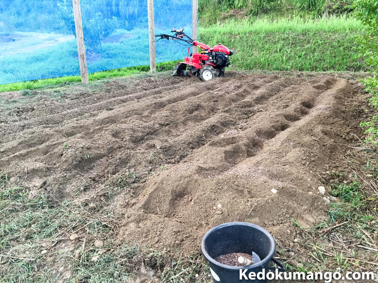 肥料散布と耕運の様子