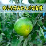 20161015-dsc_5826_ai