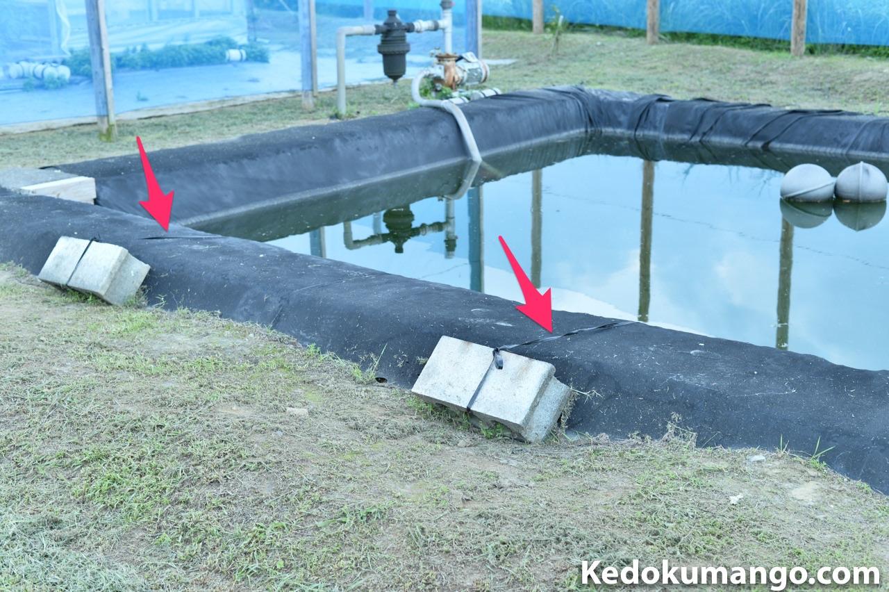 ビニールハウス用の貯水池