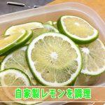 【レモン】自家栽培のレモンで果汁たっぷりの『レモンの蜂蜜漬け』を作ったぞ!