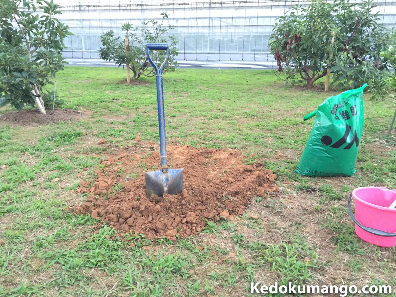 元肥を混合した土を埋め戻した様子