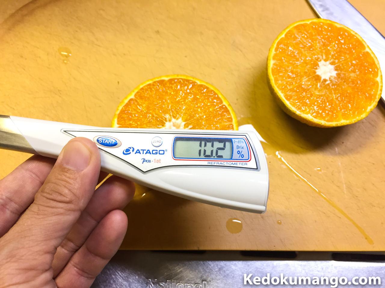 2度目のオレンジの糖度チェックの様子