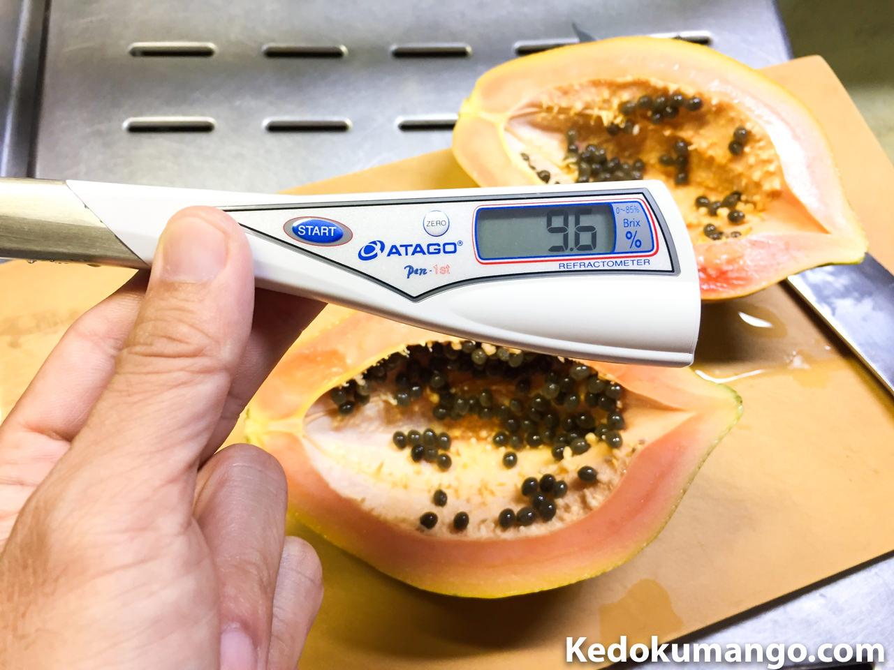 フルーツパパイヤの糖度