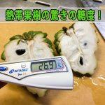 『徳之島』で育った熱帯果樹の【アテモヤ】の糖度が凄すぎる!