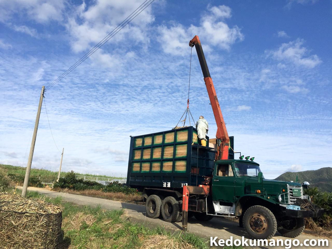 ボンネットトラックによるサトウキビの積み込み状況