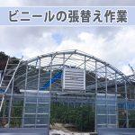 20161211-apc_0109_ai
