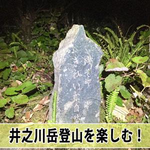 20170101-img_2498_ai