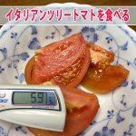 【ツリートマト】を初収穫することができたので糖度などについて紹介するよ!