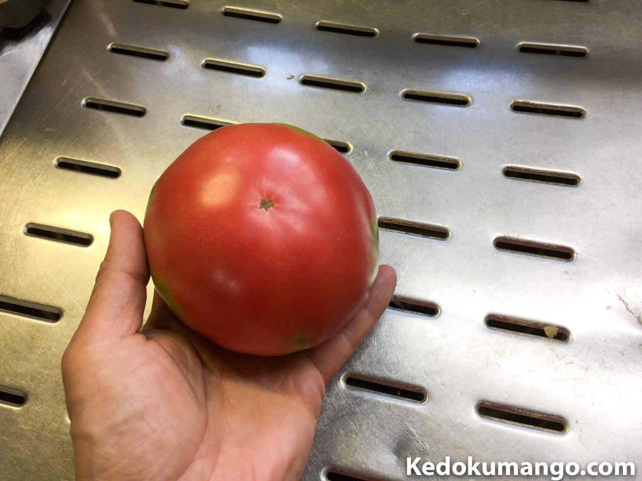 赤く熟れたイタリアンツリートマト