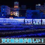【鹿児島観光】天文館公園で光り輝くイルミネーションが美しい!