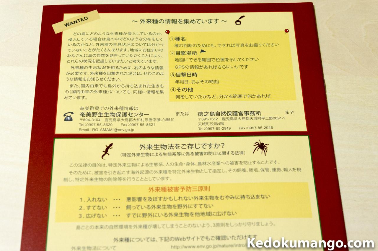 外来種に関する情報の連絡先