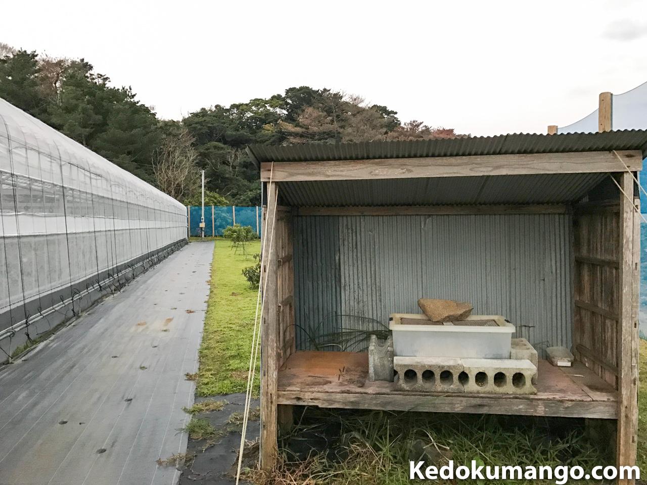 ハエの培養器の設置箇所