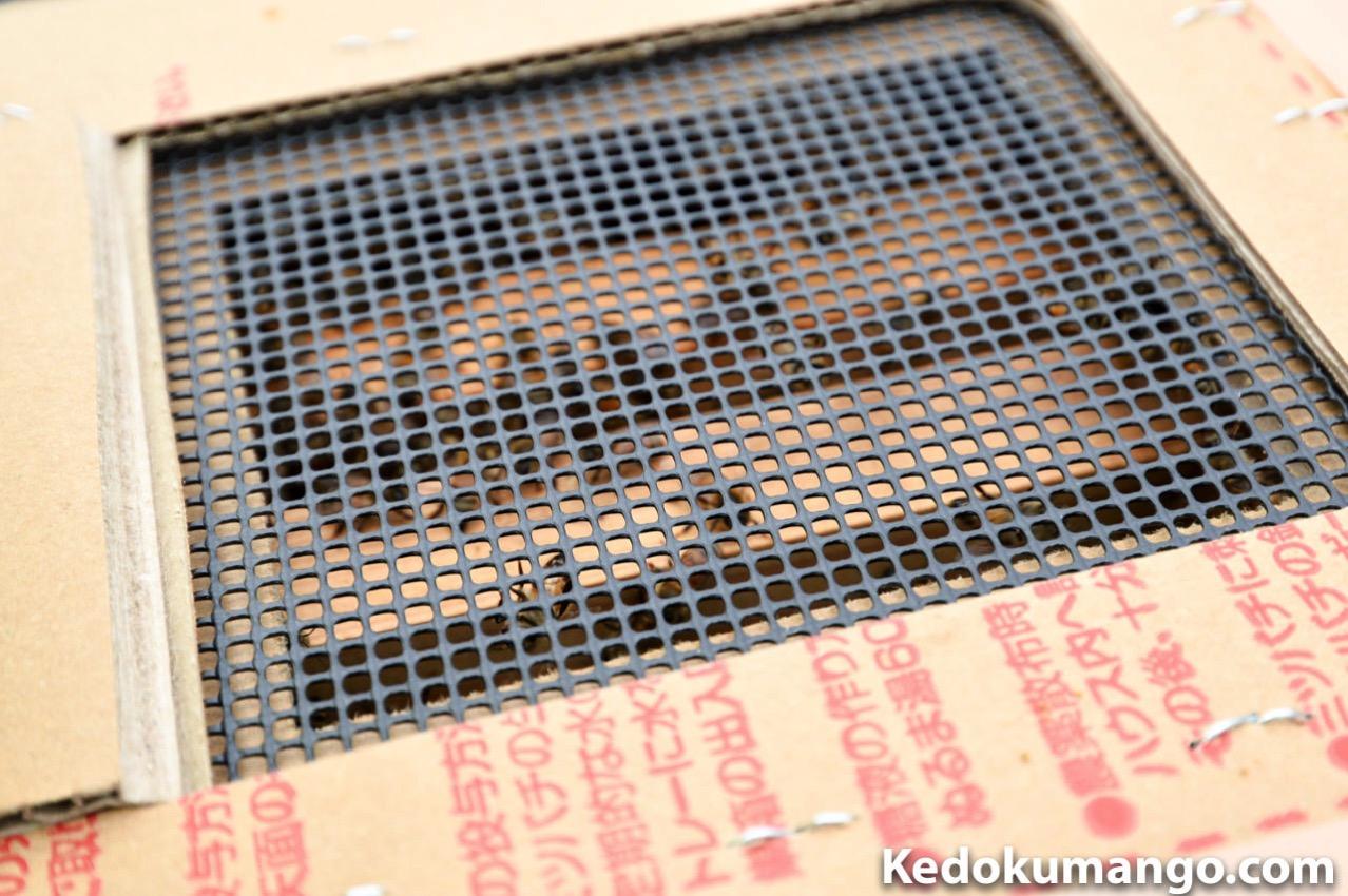 ミツバチの巣箱の中の様子