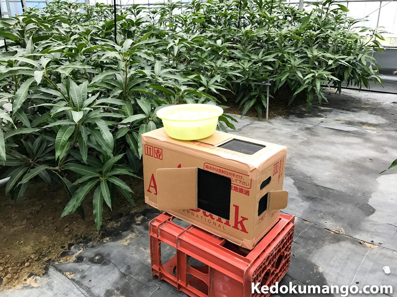 ミツバチの巣箱の設置の様子_1