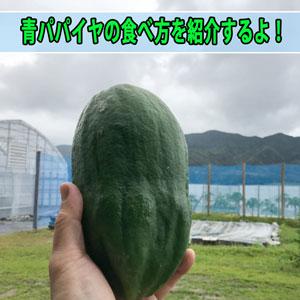 ダイエット食品の【青パパイヤ】の簡単な料理方法を紹介するよ! | 花徳マンゴー