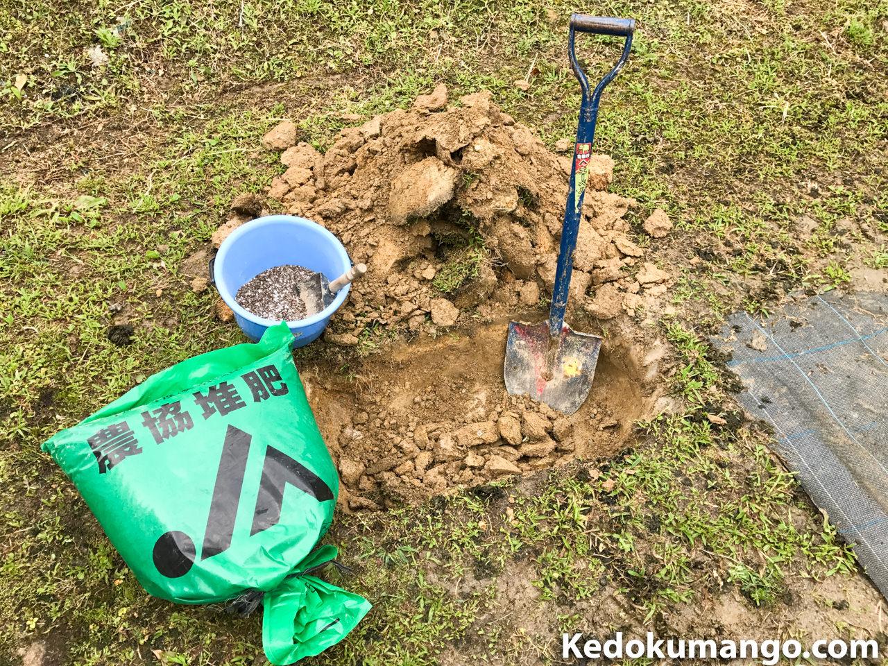 元肥と定植する穴