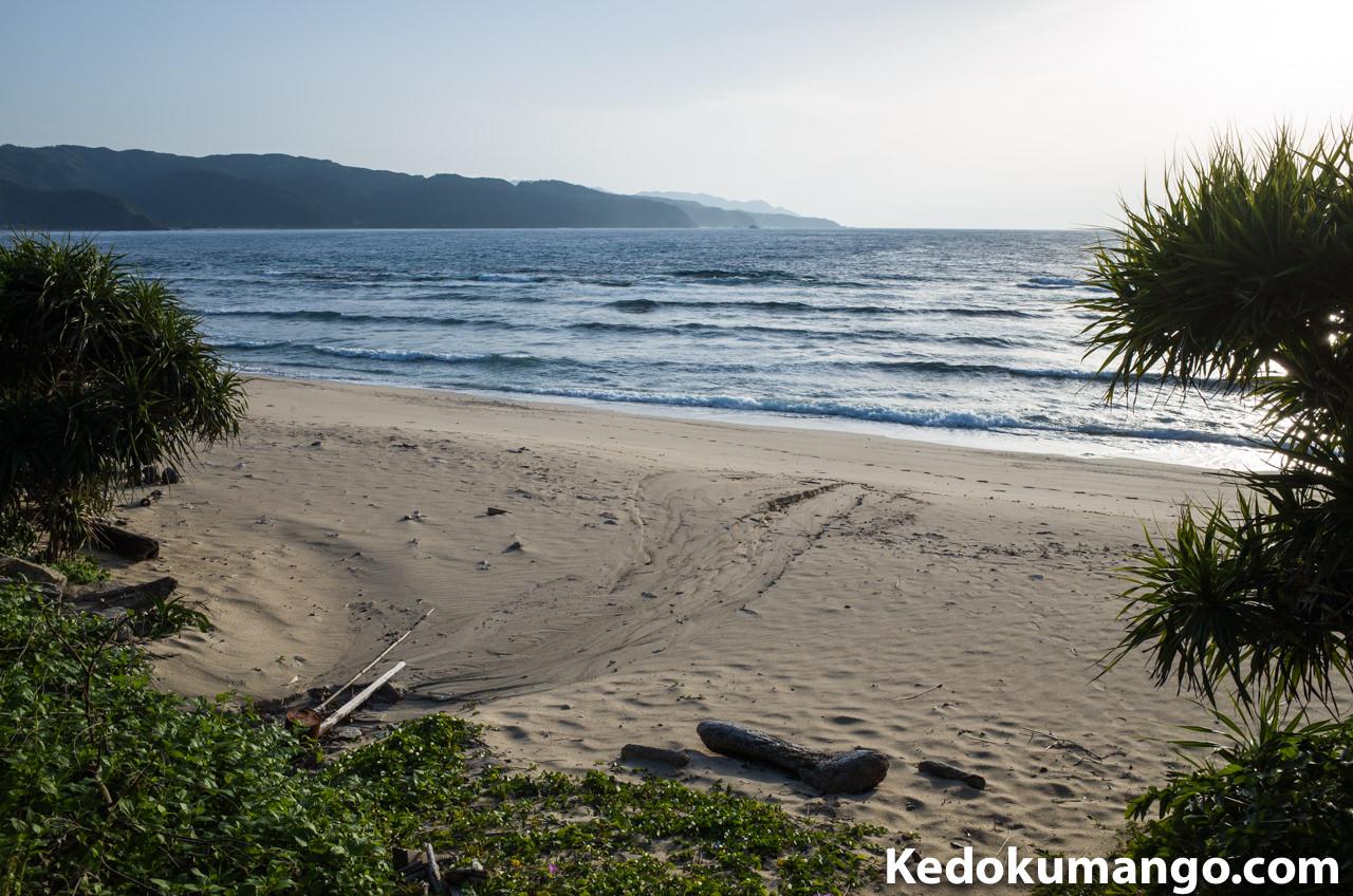 大浜海岸の散策