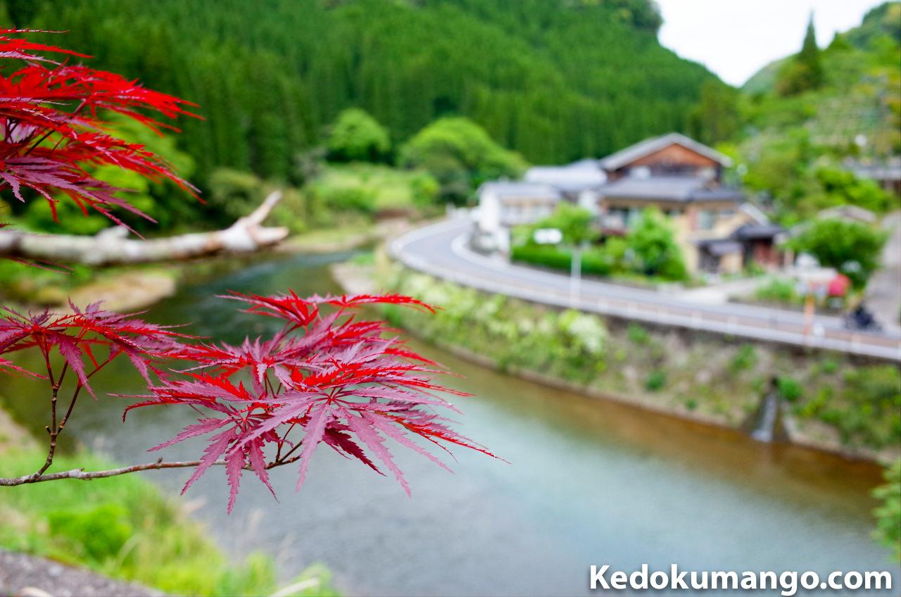 楽園荘から眺める風景
