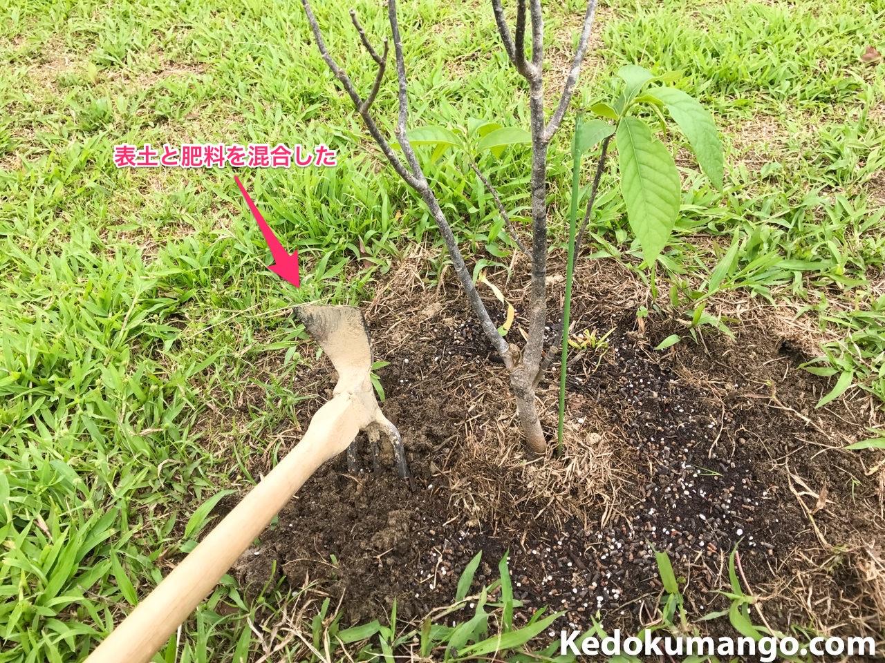 肥料散布後の処理