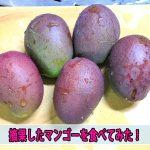 【マンゴーの食べ方5】摘果したマンゴーを漬物にして食べてみた!