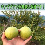 20170615-IMG_0491_ai