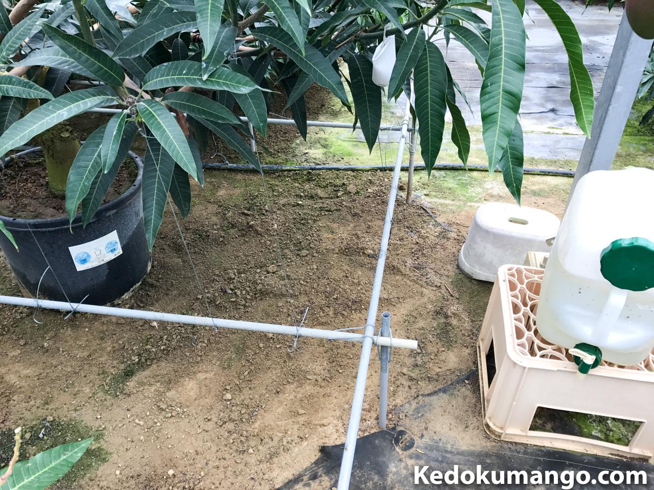 園内の空きスペース