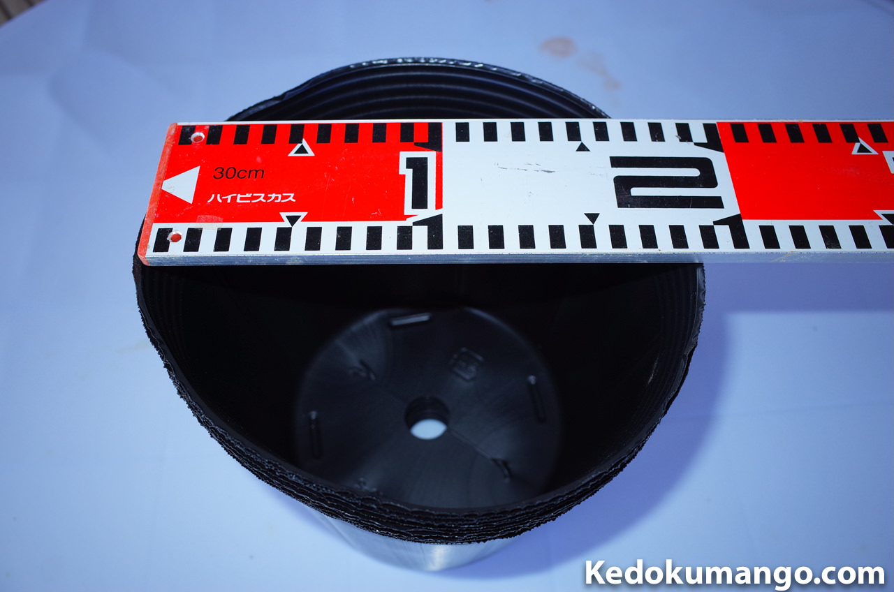 直径18cmのビニールポット鉢
