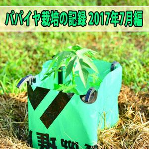 20170710-DSC_9845_ai