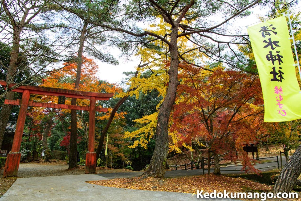清水神社の鳥居