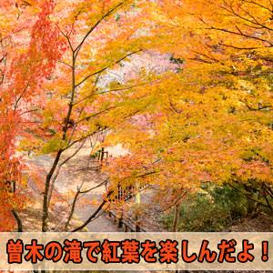 20171124-DSC_2309_ai