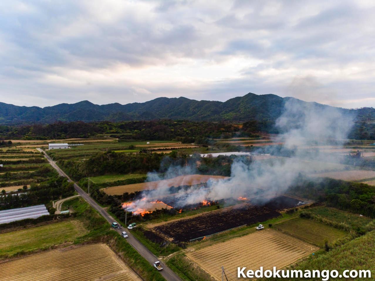 サトウキビ畑のハカマ焼き