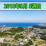 【花徳マンゴー日誌】徳之島を楽しむ生活「2018年3月の最終週」