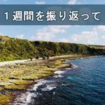 【花徳マンゴー】徳之島での2018年3月第4週を振り返ってみて
