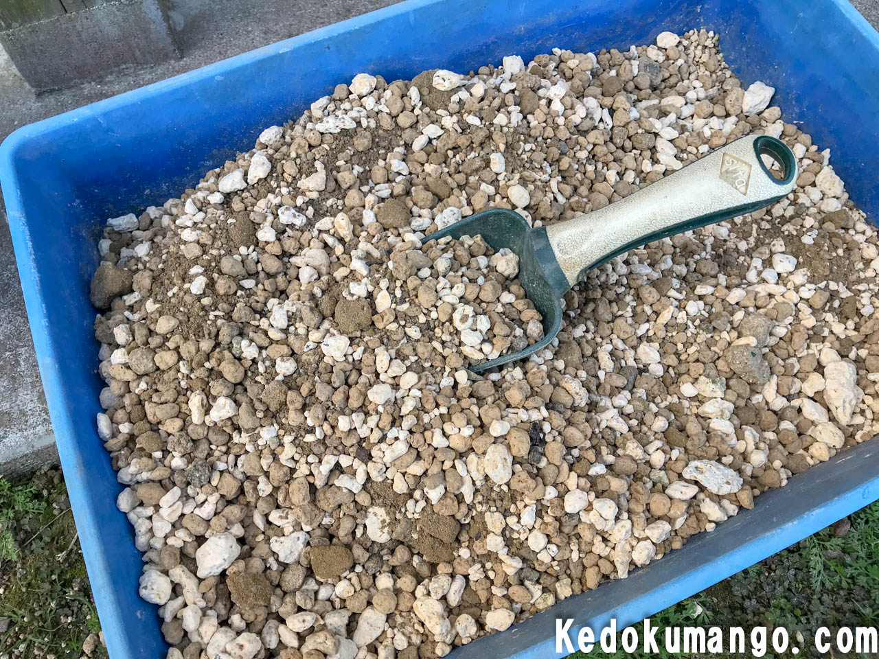 植え替えにに用いた用土