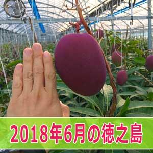 20180623IMG_2052-2ai