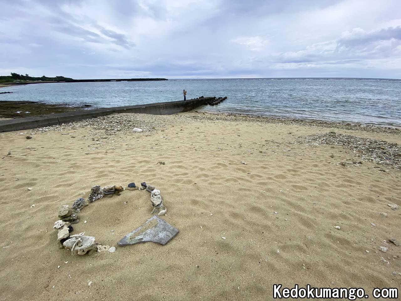 ウミガメの産卵場所の保護状況